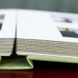 Leather Craftsmen Japanese Book Cloth wedding album, side view