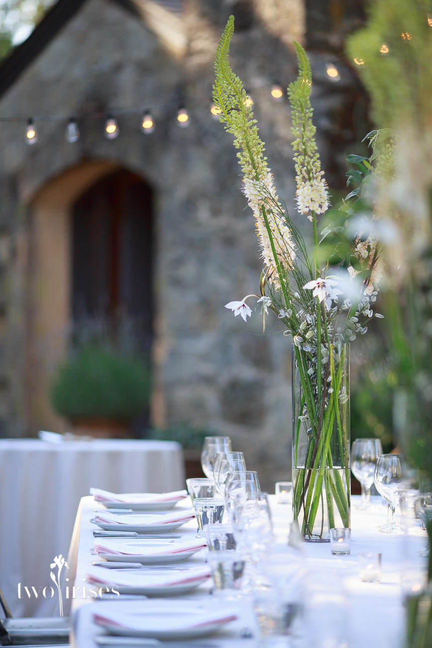 melody raye flowers at whetstone cellars