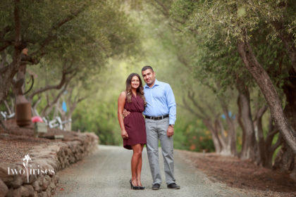 Proposal portrait in the Olive Grove at Auberge du Soleil