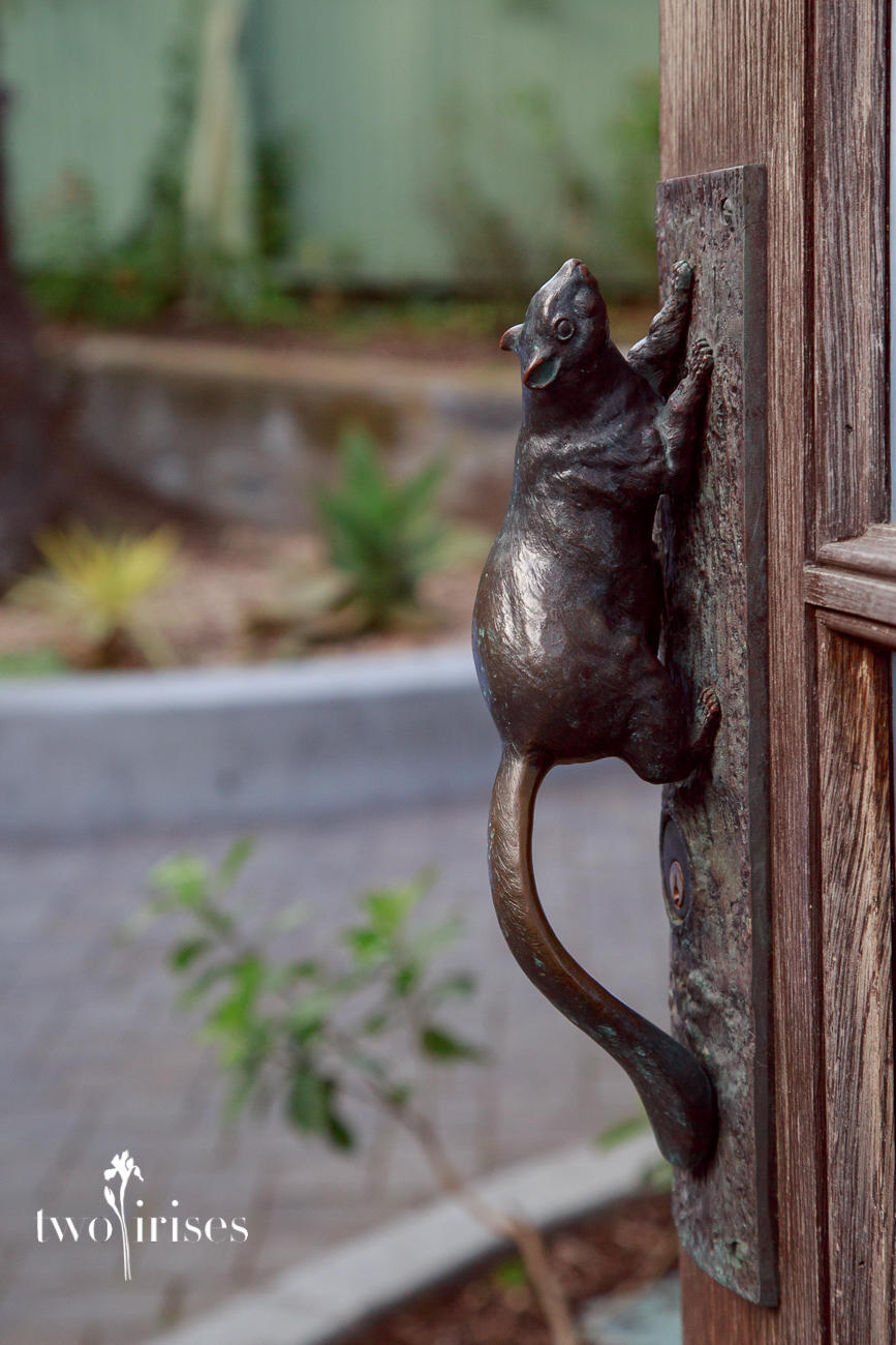 Sunnyside Conservatory detail - squirrel door handle