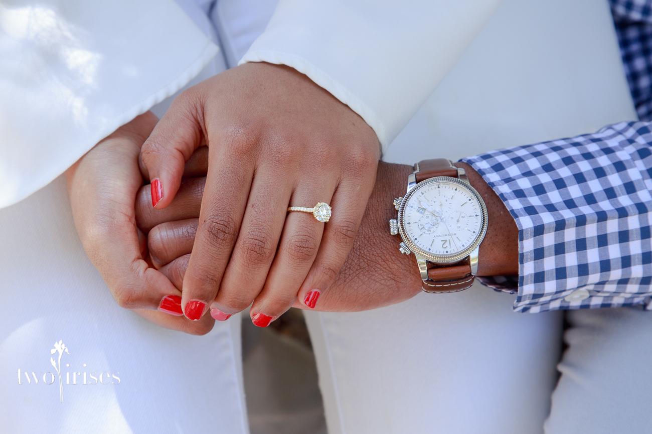 napa surprise proposal