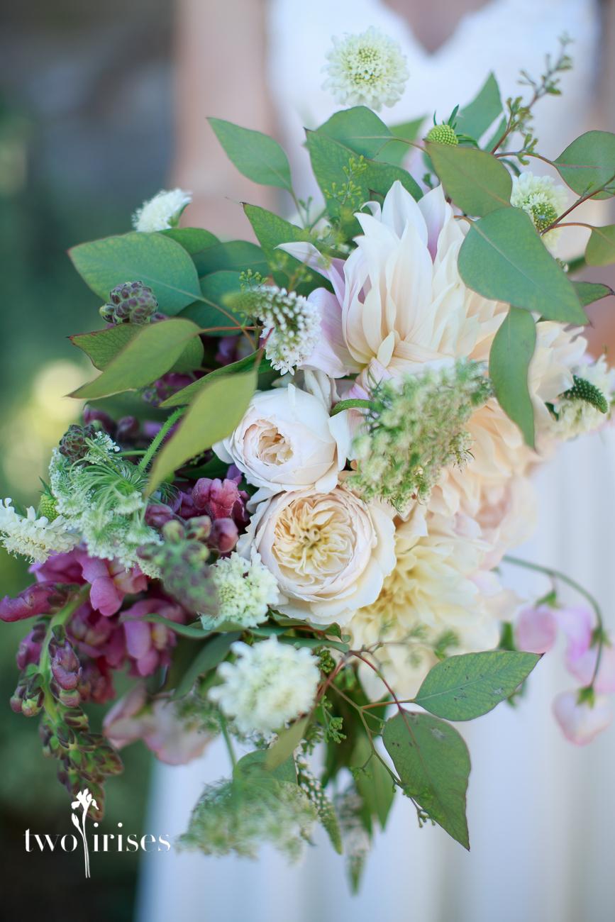 Bewilder Floral