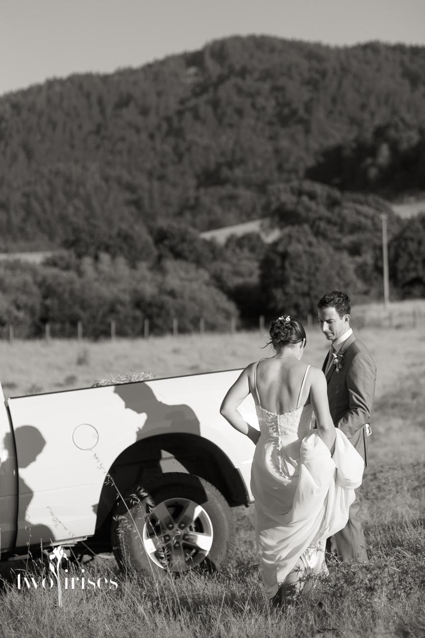 Cow Track Wedding, Nicasio