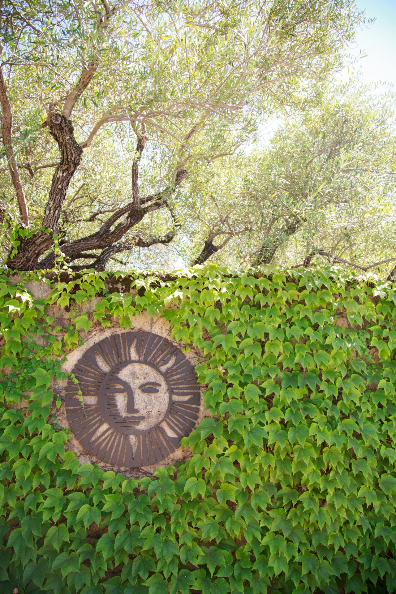 Auberge du Soleil ivy and sun