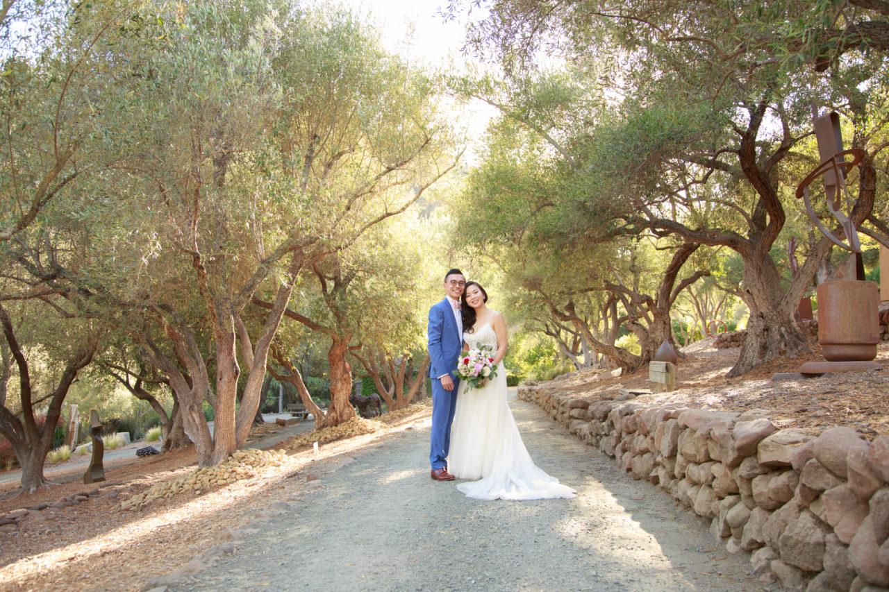 olive grove at Auberge du Soleil